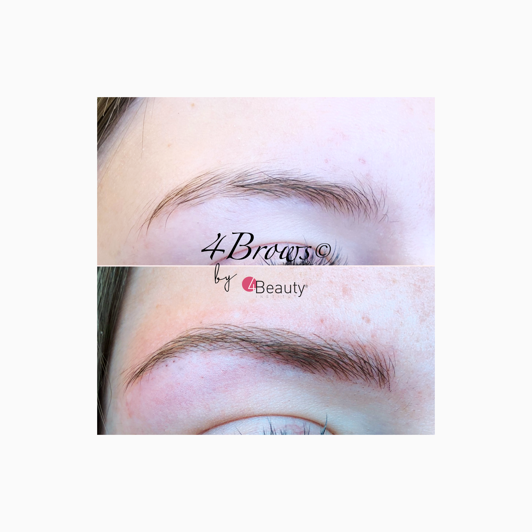 mb 4brows